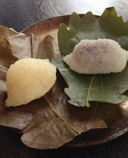 150412_kashiwa.JPG